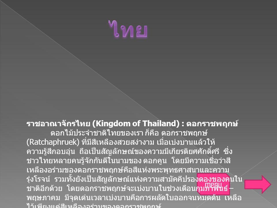 menu ราชอาณาจักรไทย (Kingdom of Thailand) : ดอกราชพฤกษ์ ดอกไม้ประจำชาติไทยของเรา ก็คือ ดอกราชพฤกษ์ (Ratchaphruek) ที่มีสีเหลืองสวยสง่างาม เมื่อเบ่งบาน