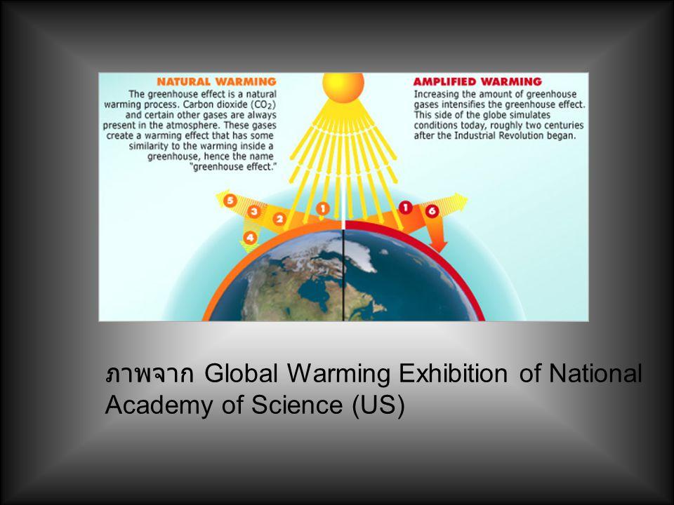 ภาพจาก Global Warming Exhibition of National Academy of Science (US)