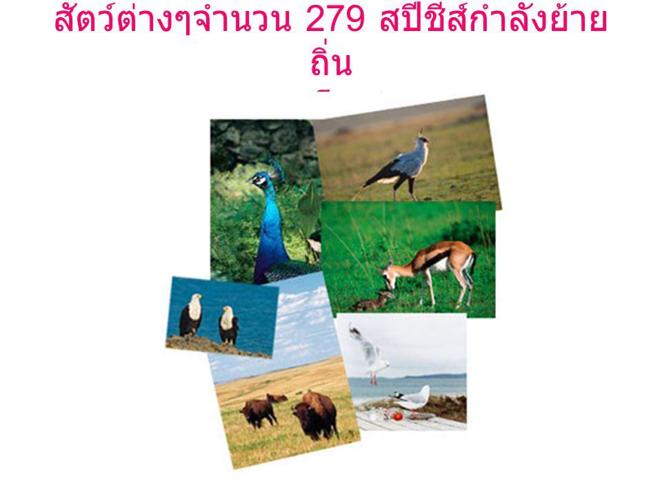 สัตว์ต่างๆจำนวน 279 สปีชีส์กำลังย้าย ถิ่น เพราะโลกร้อน