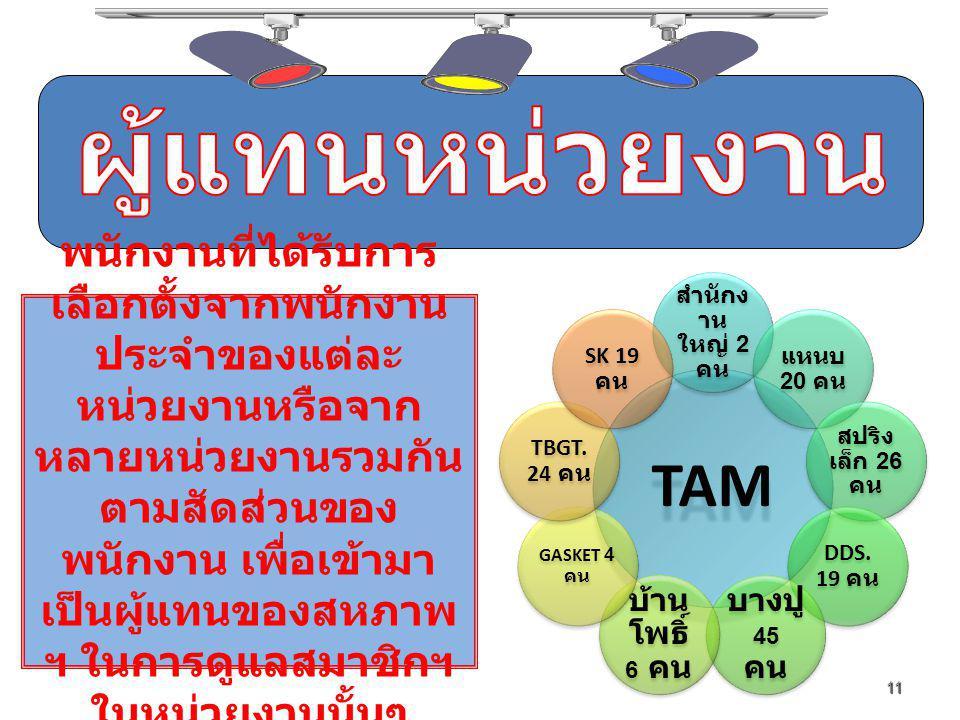 11 พนักงานที่ได้รับการ เลือกตั้งจากพนักงาน ประจำของแต่ละ หน่วยงานหรือจาก หลายหน่วยงานรวมกัน ตามสัดส่วนของ พนักงาน เพื่อเข้ามา เป็นผู้แทนของสหภาพ ฯ ในการดูแลสมาชิกฯ ในหน่วยงานนั้นๆ TAM สำนักง าน ใหญ่ 2 คน แหนบ 20 คน สปริง เล็ก 26 คน DDS.
