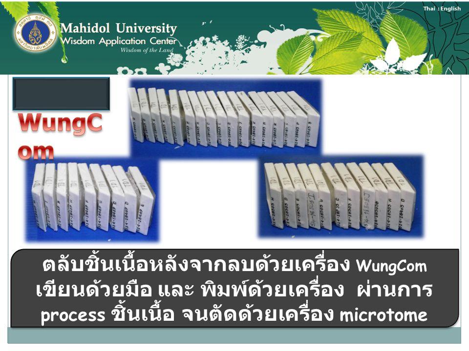 ตลับชิ้นเนื้อหลังจากลบด้วยเครื่อง WungCom เขียนด้วยมือ และ พิมพ์ด้วยเครื่อง ผ่านการ process ชิ้นเนื้อ จนตัดด้วยเครื่อง microtome