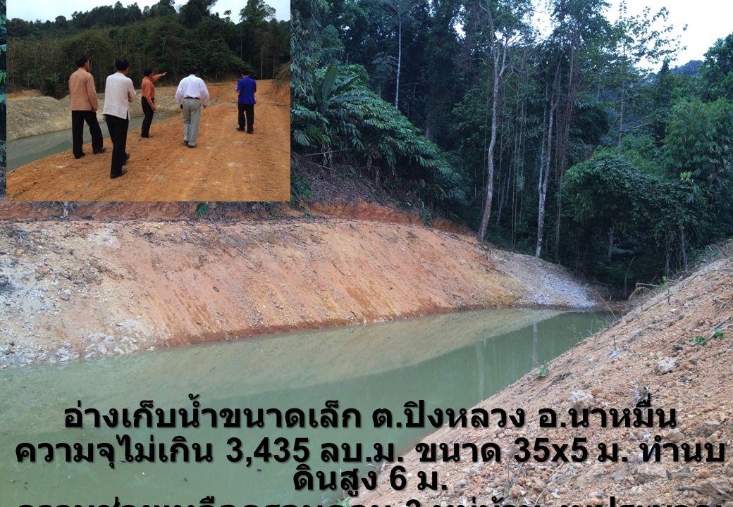 อ่างเก็บน้ำขนาดเล็ก ต. ปิงหลวง อ. นาหมื่น ความจุไม่เกิน 3,435 ลบ. ม. ขนาด 35x5 ม. ทำนบ ดินสูง 6 ม. ความช่วยเหลือครอบคลุม 3 หมู่บ้าน งบประมาณ 1.98 ล้าน