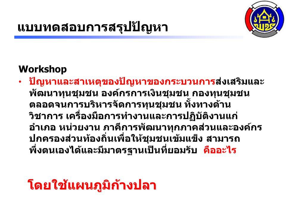 Workshop ปัญหาและสาเหตุของปัญหาของกระบวนการส่งเสริมและ พัฒนาทุนชุมชน องค์กรการเงินชุมชน กองทุนชุมชน ตลอดจนการบริหารจัดการทุนชุมชน ทั้งทางด้าน วิชาการ