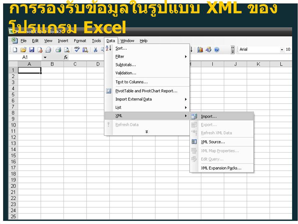 การรองรับข้อมูลในรูปแบบ XML ของ โปรแกรม Excel