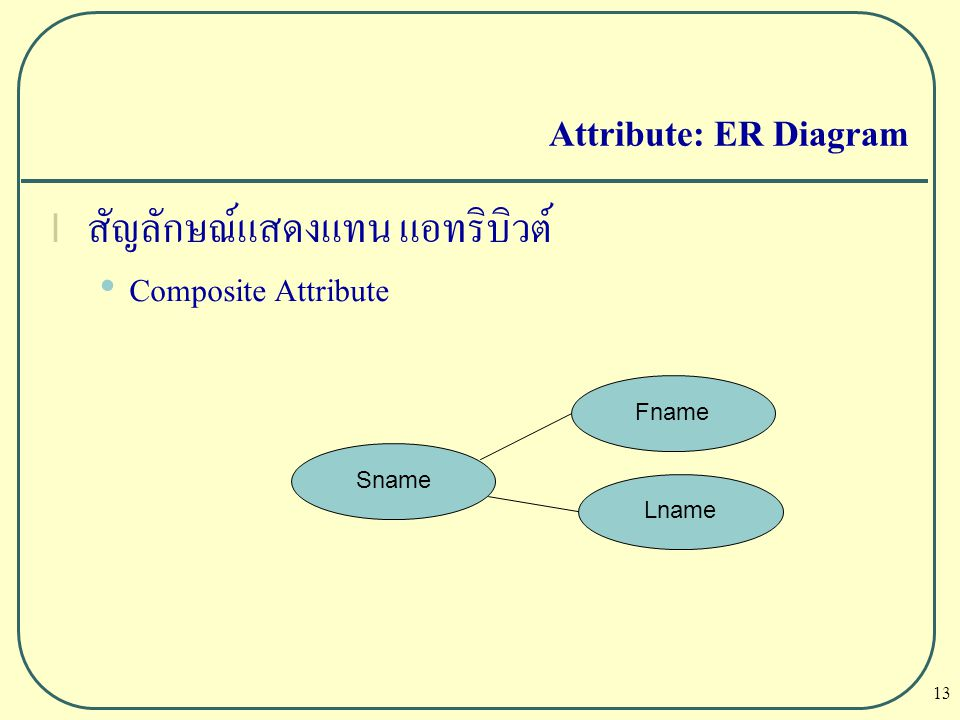 13 Attribute: ER Diagram l สัญลักษณ์แสดงแทน แอทริบิวต์ Composite Attribute Sname Fname Lname