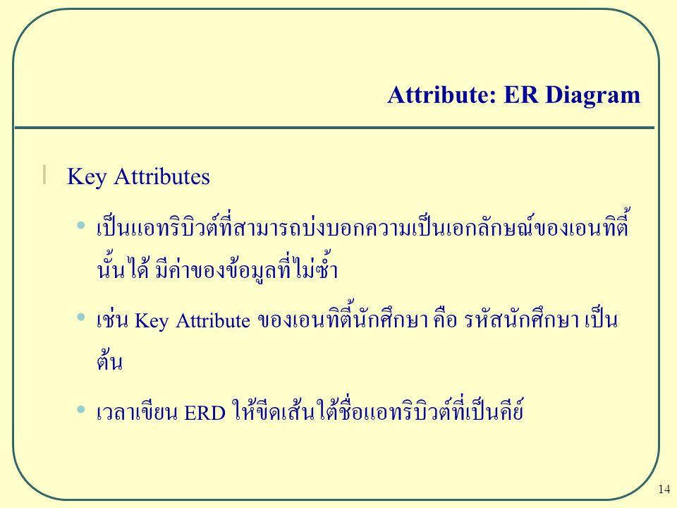 14 Attribute: ER Diagram l Key Attributes เป็นแอทริบิวต์ที่สามารถบ่งบอกความเป็นเอกลักษณ์ของเอนทิตี้ นั้นได้ มีค่าของข้อมูลที่ไม่ซ้ำ เช่น Key Attribute