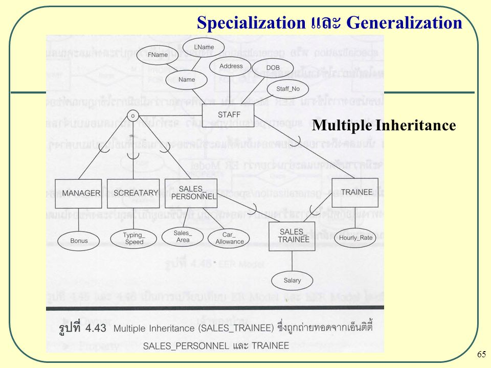 65 Specialization และ Generalization Multiple Inheritance