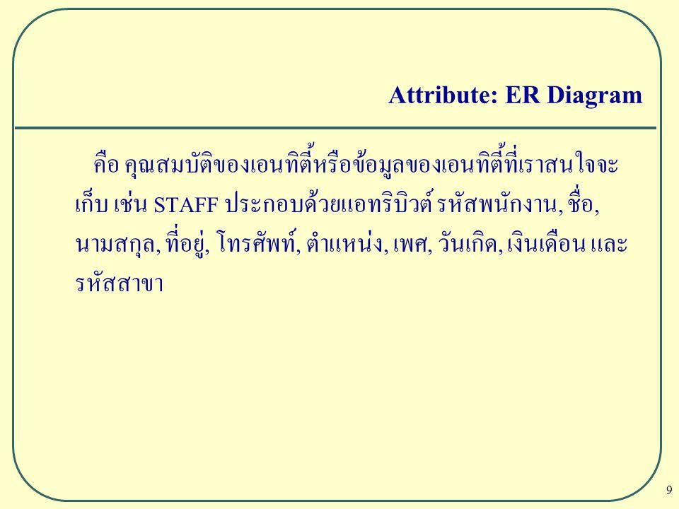 10 Attribute: ER Diagram ประเภทของแอทริบิวต์ l Simple Attribute คือแอทริบิวต์ที่มีองค์ประกอบเดียว เช่น เพศ และเงินเดือน l Composite Attribute คือ แอทริบิวต์ที่มีองค์ประกอบมากกว่า 1 ตัว แต่มีอิสระต่อกัน เช่น ที่อยู่ จะประกอบด้วย บ้านเลขที่ หมู่ที่ ตำบล อำเภอ และจังหวัด l Single-value Attribute คือ แอทริบิวต์ที่จะเก็บค่าข้อมูลเพียงค่า เดียว เช่น เพศ ก็ต้องมีค่าข้อมูลที่เก็บเพียง 1 ค่า คือ หญิง หรือ ชาย เท่านั้น