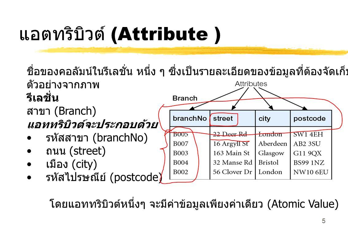5 แอตทริบิวต์ (Attribute ) ชื่อของคอลัมน์ในรีเลชั่น หนึ่ง ๆ ซึ่งเป็นรายละเอียดของข้อมูลที่ต้องจัดเก็บ ตัวอย่างจากภาพ รีเลชั่น สาขา (Branch) แอททริบิวต