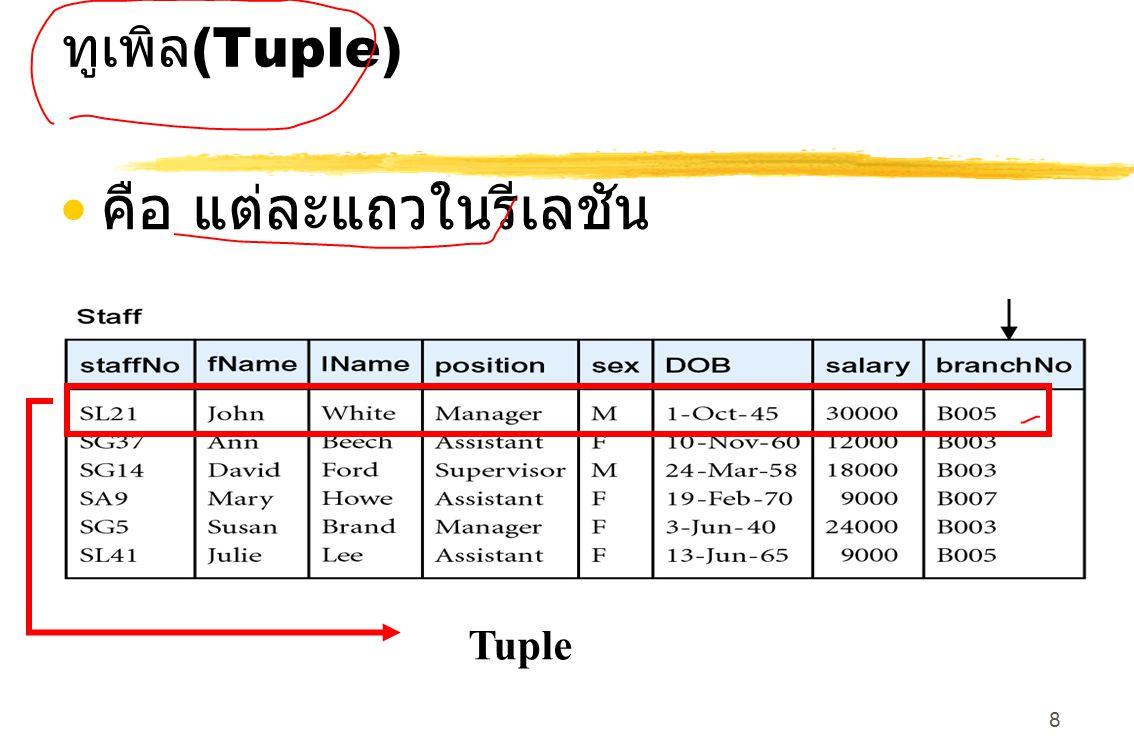 9 ดีกรี (Degree)  จำนวนแอตทริบิวต์ (attribute) ที่มีอยู่ในรีเลชัน (relation) จากรูป relation ชื่อ staff มี 8 ดีกรี (degree)