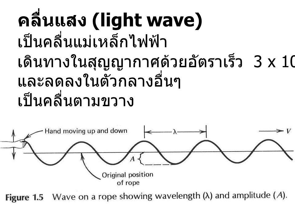คลื่นแสง (light wave) เป็นคลื่นแม่เหล็กไฟฟ้า เดินทางในสุญญากาศด้วยอัตราเร็ว 3 x 10 8 m/s และลดลงในตัวกลางอื่นๆ เป็นคลื่นตามขวาง