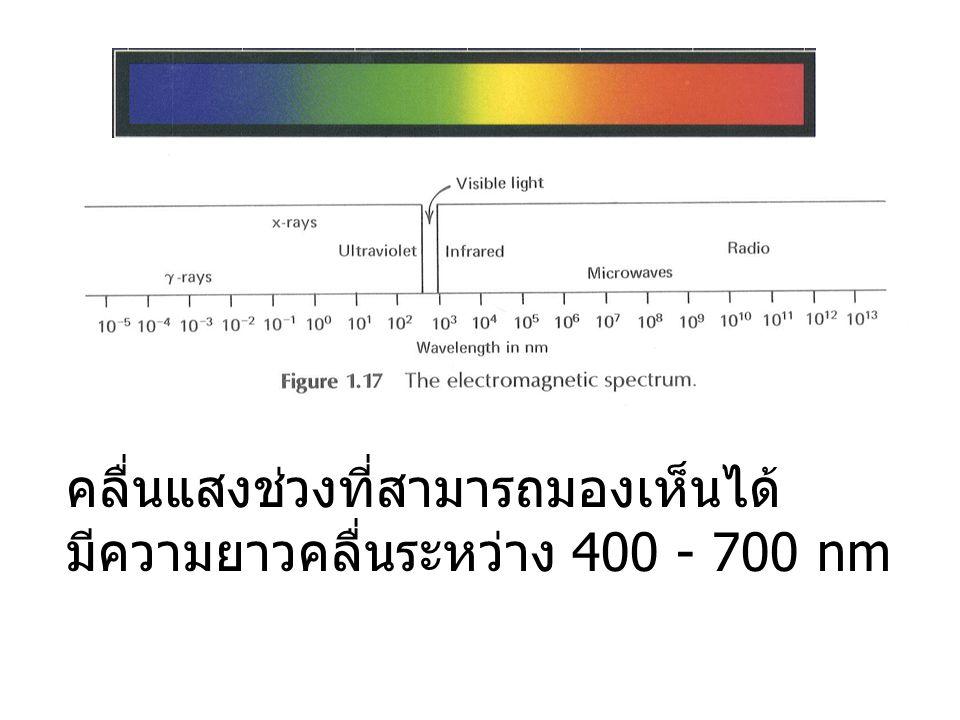 สเปคตรัมมองเห็นได้ (the visible spectrum) ในวิชาการถ่ายรูป คลื่นแสงจะรวมถึง UV และ IR ด้วย แสงที่ตามองเห็นในทางการถ่ายภาพจะแบ่งเป็น 3 แถบสี น้ำเงิน - ม่วง 400-500 นาโนเมตร เขียว 500-600 นาโนเมตร แดง 600-700 นาโนเมตร