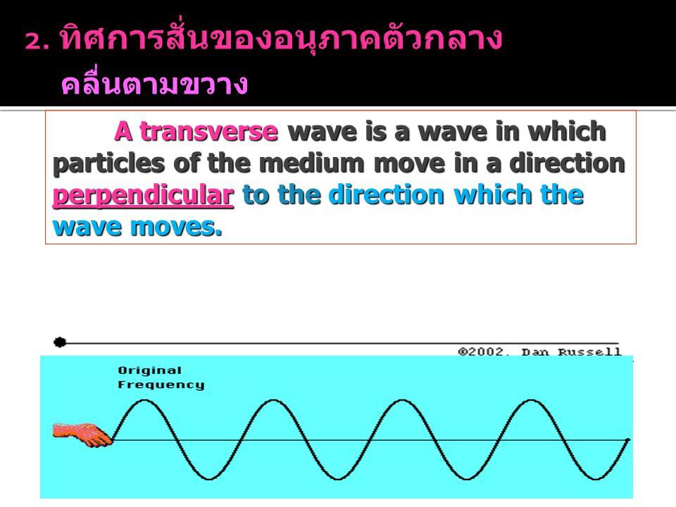 คลื่นตามขวาง (Transverse Waves) A transverse wave is a wave in which particles of the medium move in a direction perpendicular to the direction which