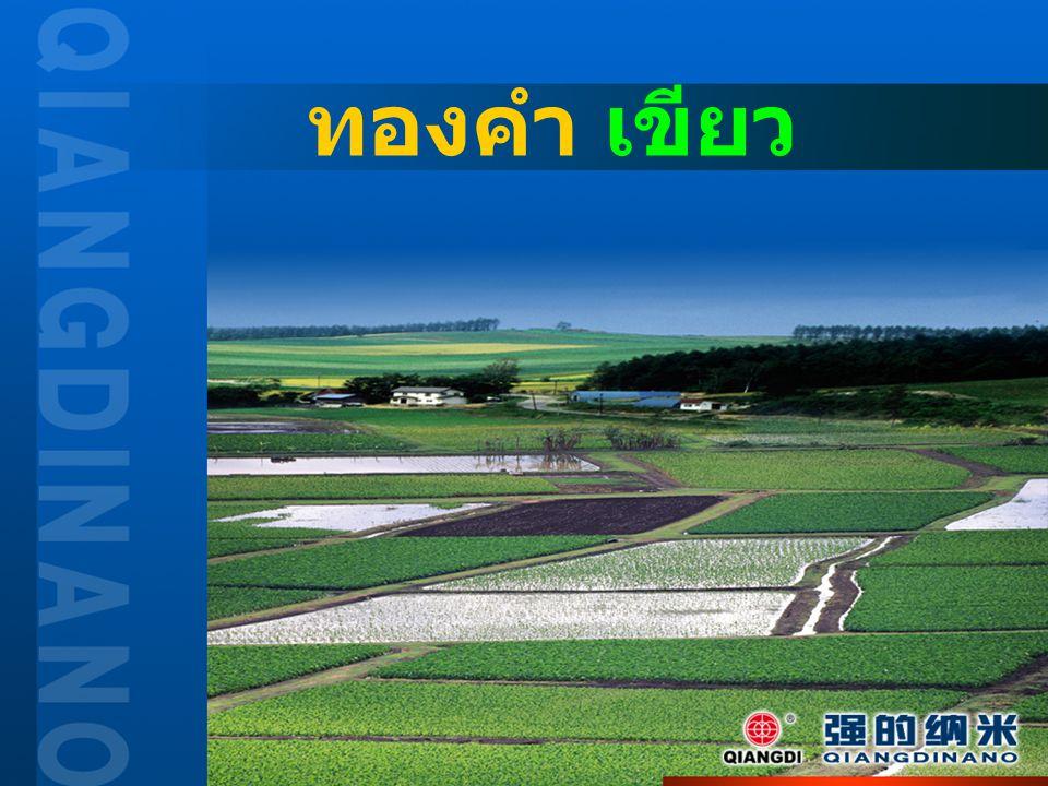 强的纳米863(外包装图)强的纳米863(外包装图) นาโน 863 อุปกรณ์เสริมสร้างสมรรถนะการ เจริญเติบโตของพืชและสัตว์