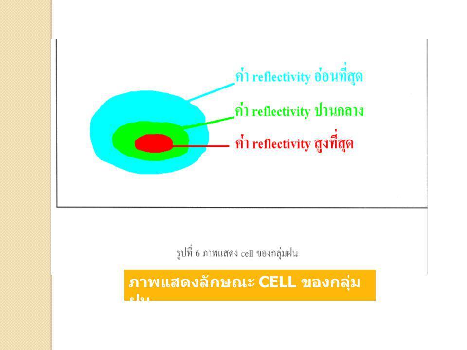 ภาพแสดงลักษณะ CELL ของกลุ่ม ฝน