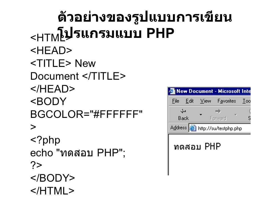 New Document <?php echo