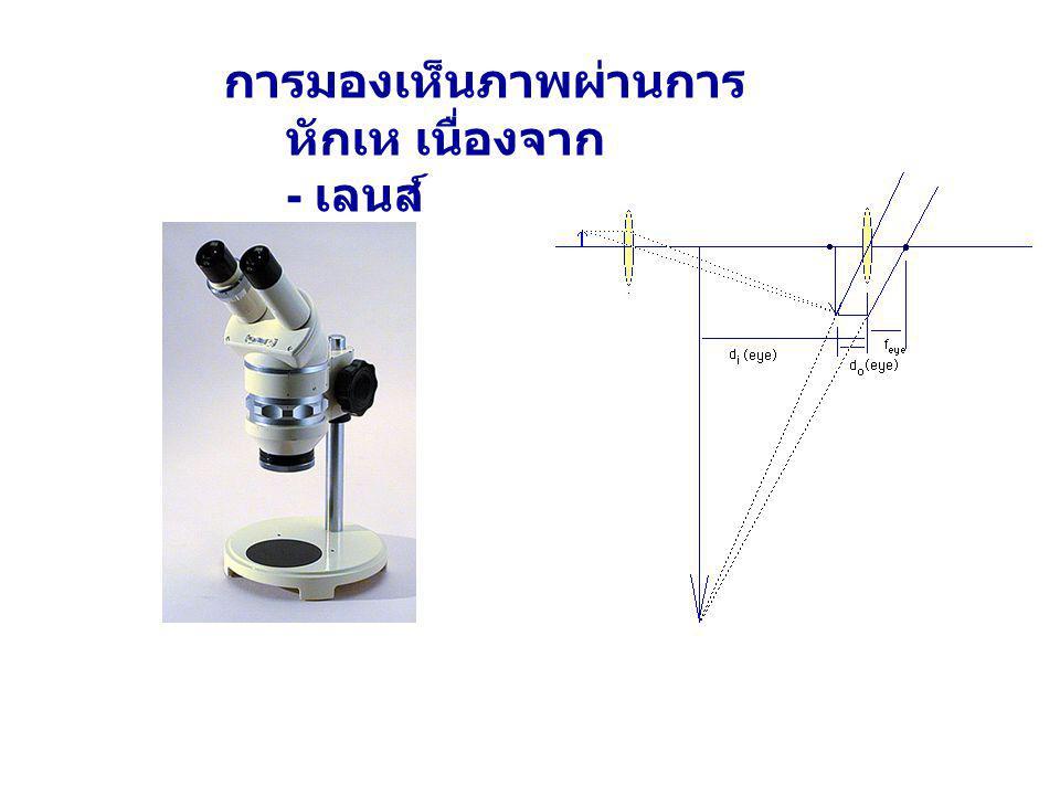 ตา หลักการ - แสงจากวัตถุหักเหผ่าน เลนส์ตา ( เลนส์นูน ) แล้ว เกิดภาพจริงชัดบนเรตินา ( ฉาก ) - ม่านตาทำหน้าที่ปรับ ปริมาณที่ตกบนเรตินา - ภาพชัดบนเรตินาเกิดได้ โดยกล้ามเนื้อยึด เลนส์บีบ - ดึงปรับทางยาว โฟกัสของเลนส์ตา