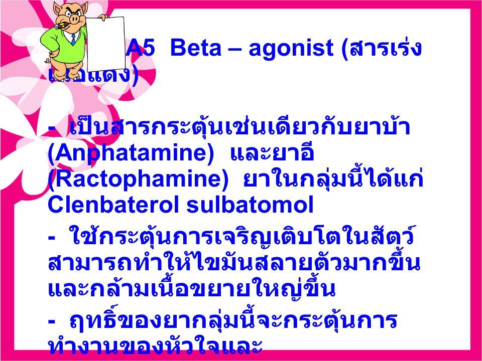 A5 Beta – agonist ( สารเร่ง เนื้อแดง ) - เป็นสารกระตุ้นเช่นเดียวกับยาบ้า (Anphatamine) และยาอี (Ractophamine) ยาในกลุ่มนี้ได้แก่ Clenbaterol sulbatomol - ใช้กระตุ้นการเจริญเติบโตในสัตว์ สามารถทำให้ไขมันสลายตัวมากขึ้น และกล้ามเนื้อขยายใหญ่ขึ้น - ฤทธิ์ของยากลุ่มนี้จะกระตุ้นการ ทำงานของหัวใจและ หลอดเลือด กระตุ้นระบบประสาท ส่วนกลางและมีผลให้หลอดลม ขยายตัว