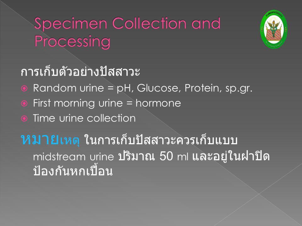 การเก็บตัวอย่างปัสสาวะ  Random urine = pH, Glucose, Protein, sp.gr.  First morning urine = hormone  Time urine collection หมาย เหตุ ในการเก็บปัสสาว