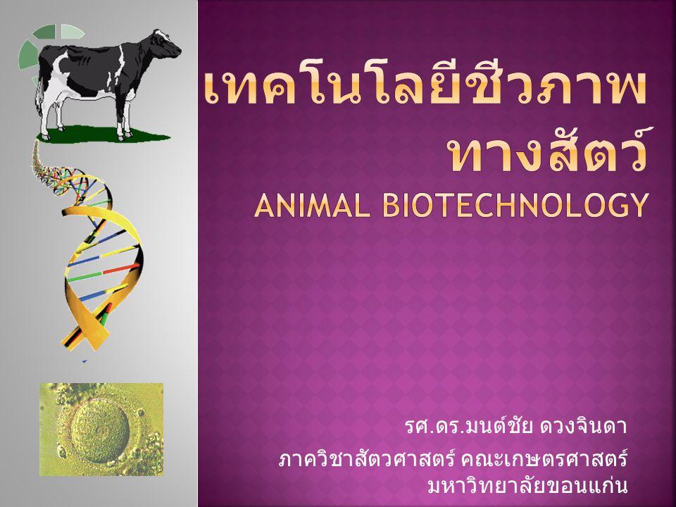 รศ. ดร. มนต์ชัย ดวงจินดา ภาควิชาสัตวศาสตร์ คณะเกษตรศาสตร์ มหาวิทยาลัยขอนแก่น
