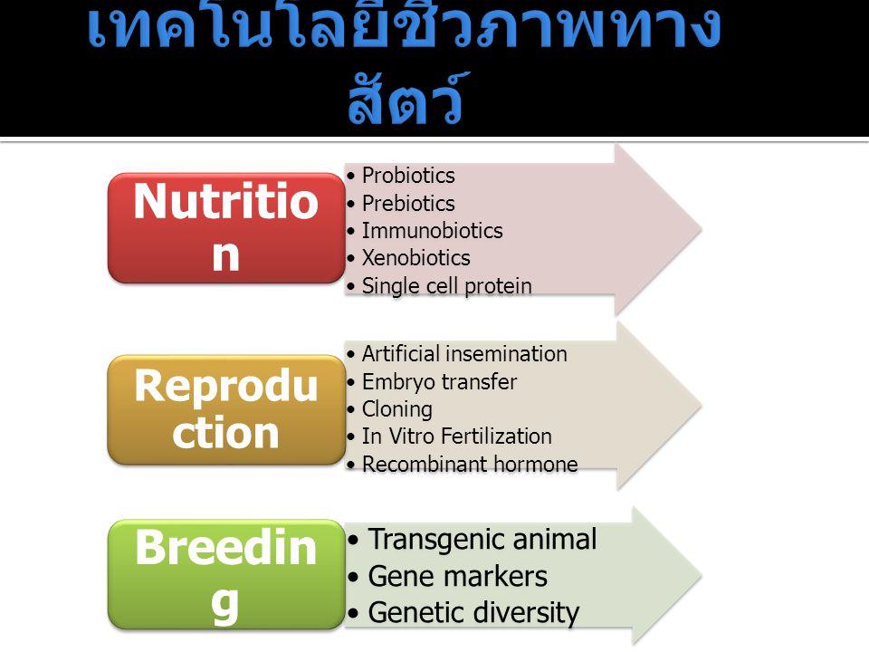 Probiotics Prebiotics Immunobiotics Xenobiotics Single cell protein Nutritio n Artificial insemination Embryo transfer Cloning In Vitro Fertilization