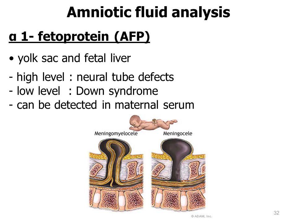 α 1- fetoprotein (AFP) yolk sac and fetal liver - high level : neural tube defects - low level : Down syndrome - can be detected in maternal serum Amniotic fluid analysis 32
