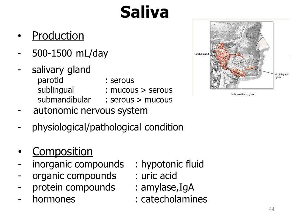44 Saliva Production -500-1500 mL/day -salivary gland parotid : serous sublingual : mucous > serous submandibular : serous > mucous - autonomic nervous system -physiological/pathological condition Composition -inorganic compounds : hypotonic fluid -organic compounds: uric acid -protein compounds: amylase,IgA -hormones: catecholamines