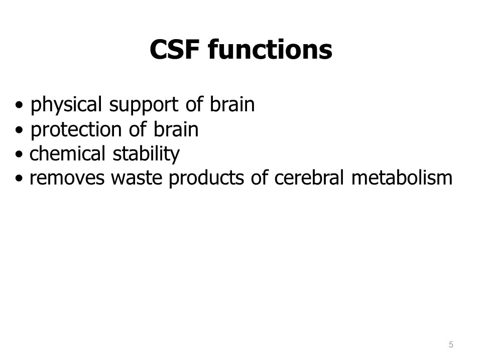 physical support of brain protection of brain chemical stability removes waste products of cerebral metabolism CSF functions 5