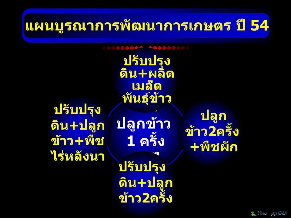 มิติด้านการพัฒนา จำนวน (โครงการ/ กิจกรรม) งบประมาณ (บาท) 1.