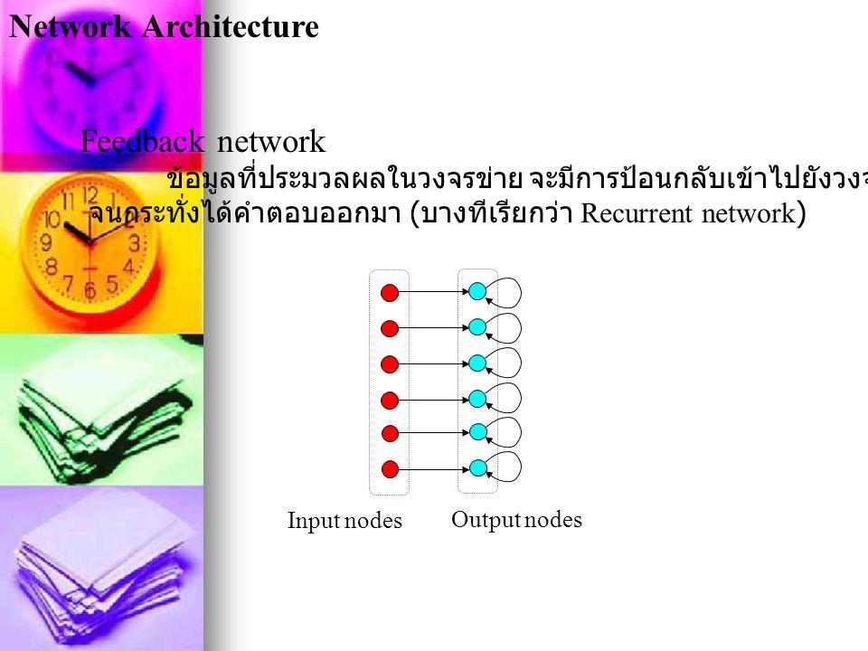 Network Architecture Feedback network ข้อมูลที่ประมวลผลในวงจรข่าย จะมีการป้อนกลับเข้าไปยังวงจรข่ายหลายๆครั้ง จนกระทั่งได้คำตอบออกมา ( บางทีเรียกว่า Re