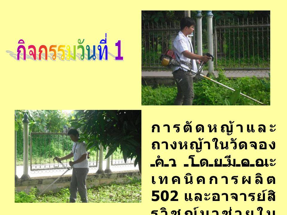 การตัดหญ้าและ ถางหญ้าในวัดจอง คำ โดยมีคณะ เทคนิคการผลิต 502 และอาจารย์สิ รวิชญ์มาช่วยใน กิจกรรมครั้งนี้