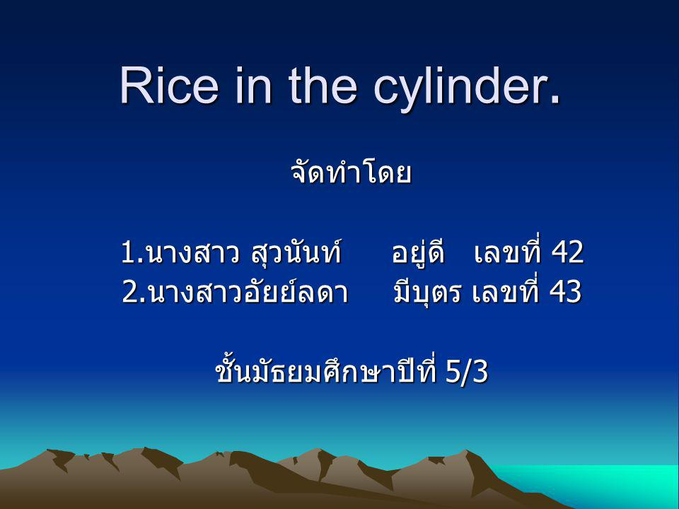 Rice in the cylinder. จัดทำโดย 1. นางสาว สุวนันท์อยู่ดี เลขที่ 42 2.