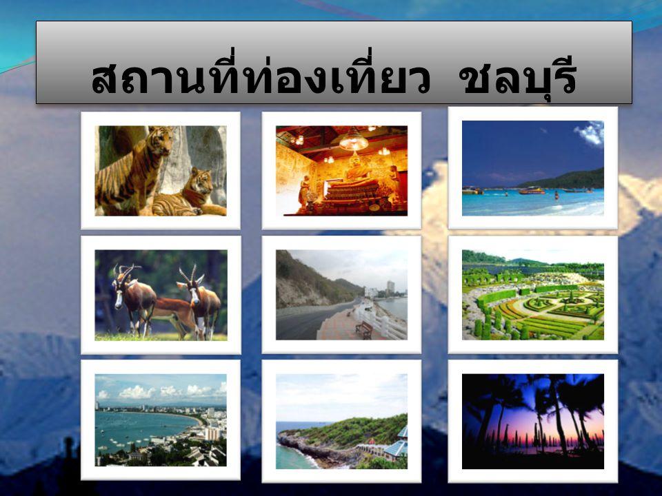 สถานที่ท่องเที่ยว ชลบุรี