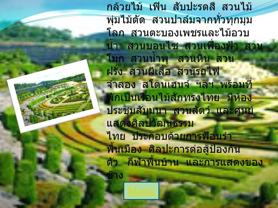 สวนนงนุช สวนนงนุช (Nong Nooch Tropical Botanical Garden) เป็นสถานที่ พักผ่อนหย่อนใจในพื้นที่กว่า 1,500 ไร่ ภายในมีสวนไม้ดอกไม้ประดับ นานาชนิด เช่น สวน กล้วยไม้ เฟิน สับปะรดสี สวนไม้ พุ่มไม้ดัด สวนปาล์มจากทั่วทุกมุม โลก สวนตะบองเพชรและไม้อวบ น้ำ สวนบอนไซ สวนเฟื่องฟ้า สวน โมก สวนน้ำพุ สวนหิน สวน ฝรั่ง สวนผีเสื้อ สวนรถไฟ จำลอง สโตนเฮนจ์ ฯลฯ พร้อมที่ พักเป็นเรือนไม้สักทรงไทย มีห้อง ประชุมสัมมนา สวนสัตว์ และศูนย์ แสดงศิลปวัฒนธรรม ไทย ประกอบด้วยการฟ้อนรำ พื้นเมือง ศิลปะการต่อสู้ป้องกัน ตัว กีฬาพื้นบ้าน และการแสดงของ ช้าง Manu