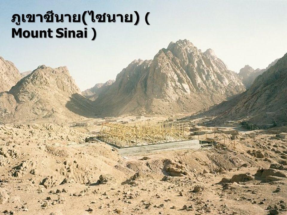 ภูเขาซีนาย ( ไซนาย ) ( Mount Sinai )