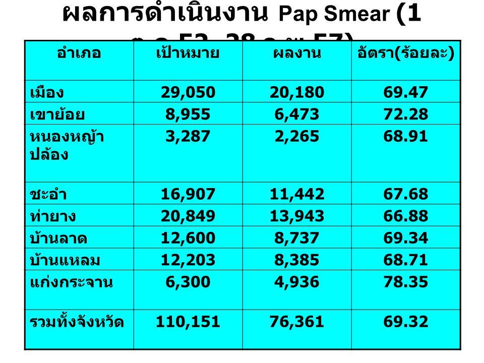 ผลการดำเนินงาน Pap Smear (1 ต. ค.52–28 ก. พ.57) อำเภอเป้าหมายผลงานอัตรา ( ร้อยละ ) เมือง 29,05020,18069.47 เขาย้อย 8,9556,47372.28 หนองหญ้า ปล้อง 3,28