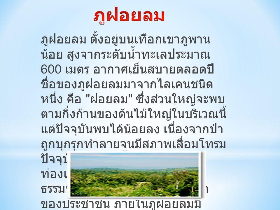 ภูฝอยลม ตั้งอยู่บนเทือกเขาภูพาน น้อย สูงจากระดับน้ำทะเลประมาณ 600 เมตร อากาศเย็นสบายตลอดปี ชื่อของภูฝอยลมมาจากไลเคนชนิด หนึ่ง คือ ฝอยลม ซึ่งส่วนใหญ่จะพบ ตามกิ่งก้านของต้นไม้ใหญ่ในบริเวณนี้ แต่ปัจจุบันพบได้น้อยลง เนื่องจากป่า ถูกบุกรุกทำลายจนมีสภาพเสื่อมโทรม ปัจจุบันมีการจัดตั้งเป็นแหล่ง ท่องเที่ยวเชิงนิเวศเพื่ออนุรักษ์ ธรรมชาติ และให้เป็นที่ทัศนศึกษา ของประชาชน ภายในภูฝอยลมมี สวนรวมพรรณไม้ป่า 60 พรรษา