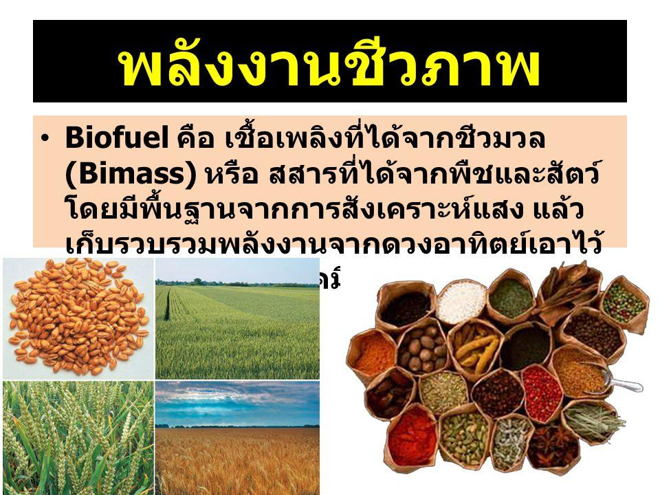 พลังงานชีวภาพ Biofuel คือ เชื้อเพลิงที่ได้จากชีวมวล (Bimass) หรือ สสารที่ได้จากพืชและสัตว์ โดยมีพื้นฐานจากการสังเคราะห์แสง แล้ว เก็บรวบรวมพลังงานจากดว