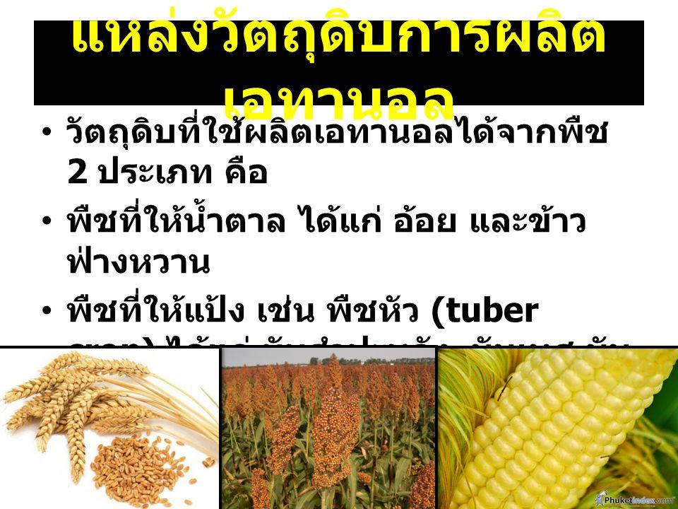 แหล่งวัตถุดิบการผลิต เอทานอล วัตถุดิบที่ใช้ผลิตเอทานอลได้จากพืช 2 ประเภท คือ พืชที่ให้น้ำตาล ได้แก่ อ้อย และข้าว ฟ่างหวาน พืชที่ให้แป้ง เช่น พืชหัว (t