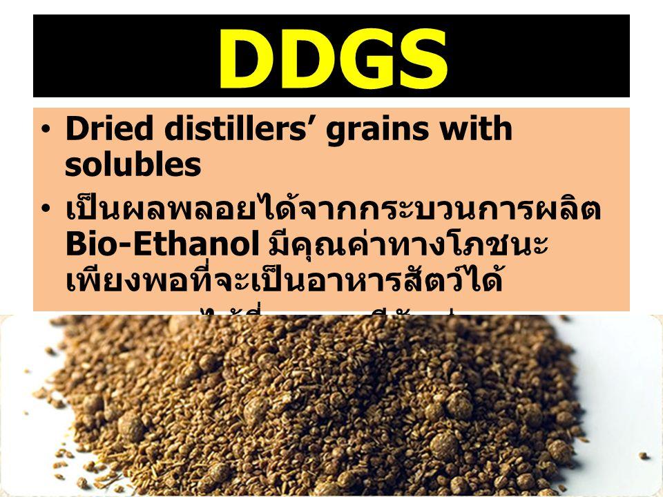DDGS Dried distillers' grains with solubles เป็นผลพลอยได้จากกระบวนการผลิต Bio-Ethanol มีคุณค่าทางโภชนะ เพียงพอที่จะเป็นอาหารสัตว์ได้ ผลพลอยได้ที่ออกมา