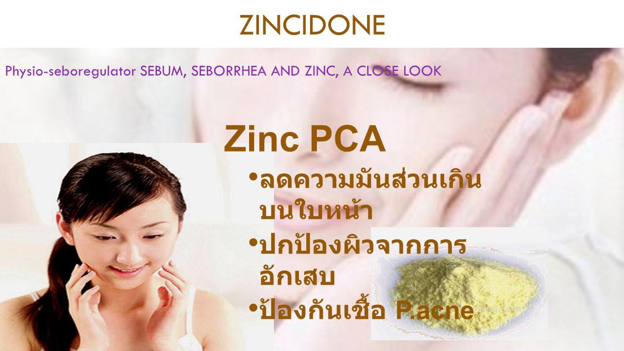 Zinc PCA ลดความมันส่วนเกิน บนใบหน้า ปกป้องผิวจากการ อักเสบ ป้องกันเชื้อ P.acne ZINCIDONE Physio-seboregulator SEBUM, SEBORRHEA AND ZINC, A CLOSE LOOK