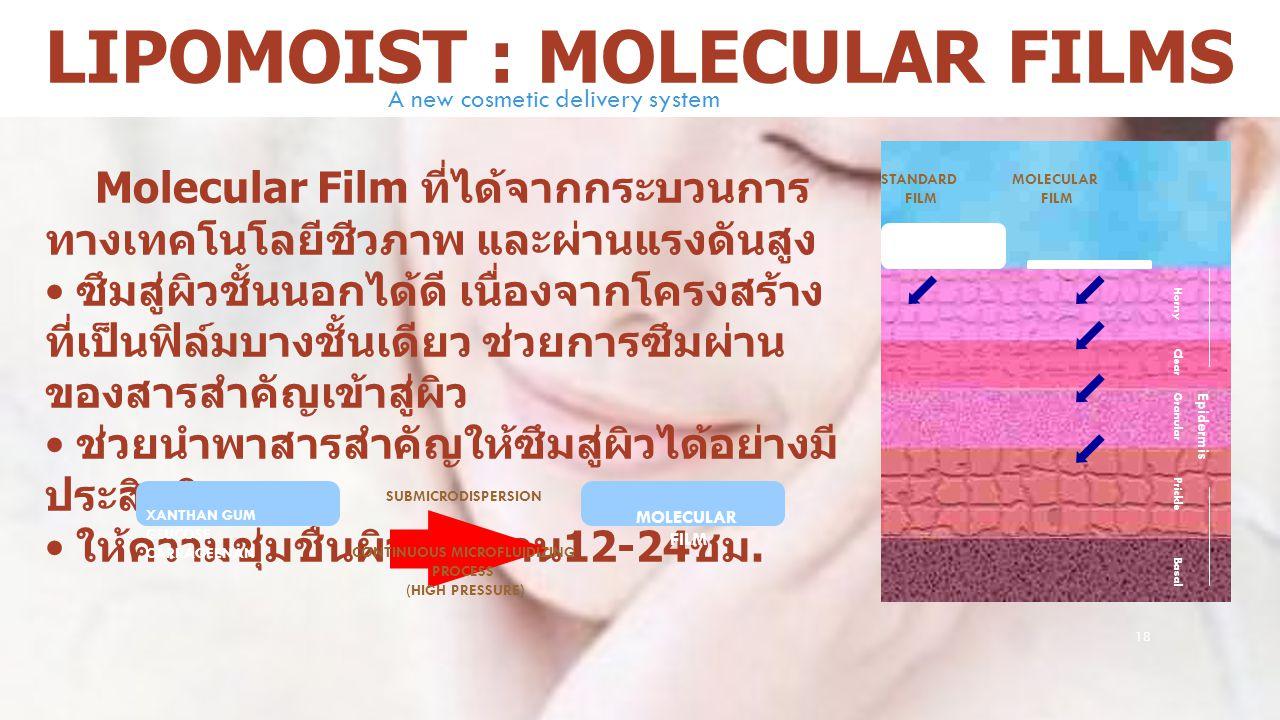 18 LIPOMOIST : MOLECULAR FILMS Molecular Film ที่ได้จากกระบวนการ ทางเทคโนโลยีชีวภาพ และผ่านแรงดันสูง ซึมสู่ผิวชั้นนอกได้ดี เนื่องจากโครงสร้าง ที่เป็นฟ