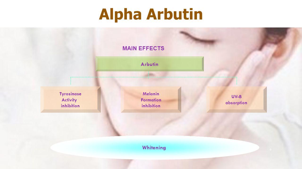6 MAIN EFFECTS Arbutin Tyrosinase Activity inhibition Whitening Melanin Formation inhibition UV-B absorption Alpha Arbutin