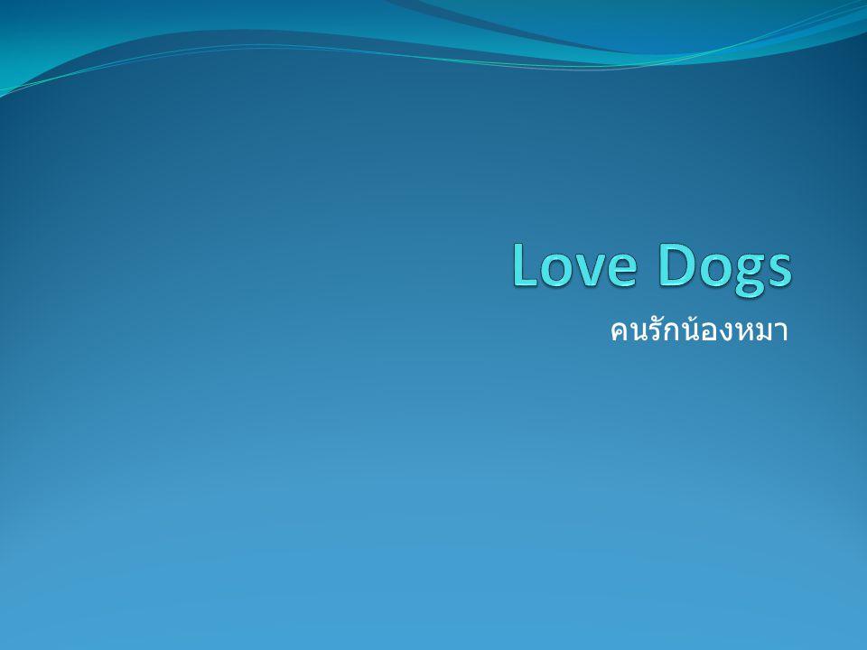 คนรักน้องหมา