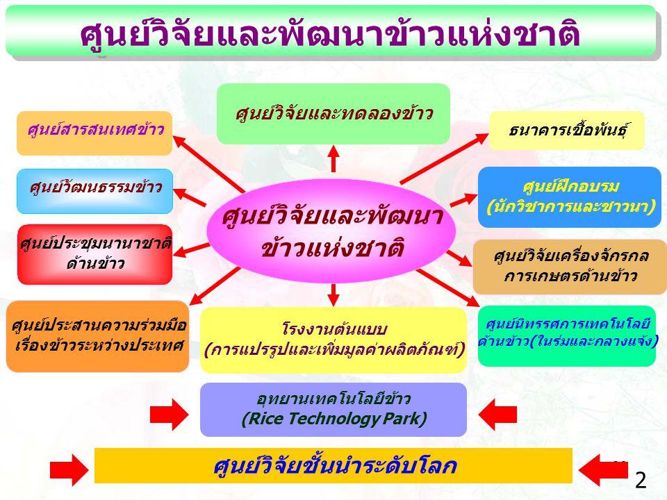 26 ศูนย์วิจัยและพัฒนาข้าวแห่งชาติ ศูนย์วิจัยและพัฒนา ข้าวแห่งชาติ ศูนย์วิจัยและทดลองข้าว ศูนย์สารสนเทศข้าว ศูนย์วัฒนธรรมข้าว โรงงานต้นแบบ (การแปรรูปแล