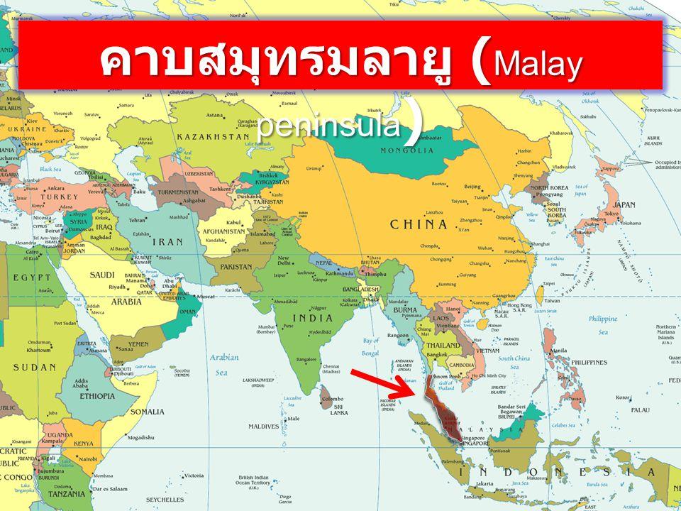 คาบสมุทรมลายู ( Malay peninsula )