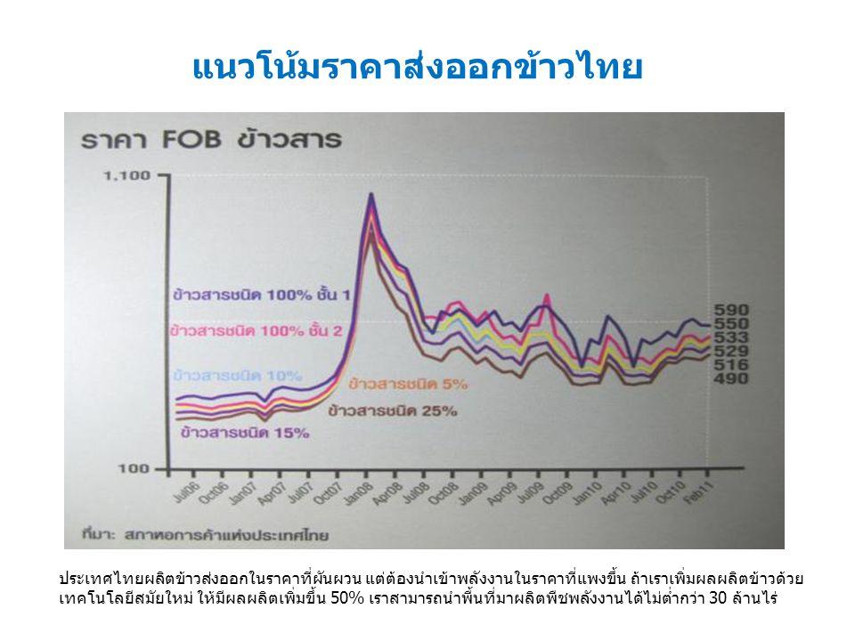 แนวโน้มราคาส่งออกข้าวไทย ประเทศไทยผลิตข้าวส่งออกในราคาที่ผันผวน แต่ต้องนำเข้าพลังงานในราคาที่แพงขึ้น ถ้าเราเพิ่มผลผลิตข้าวด้วย เทคโนโลยีสมัยใหม่ ให้มีผลผลิตเพิ่มขึ้น 50% เราสามารถนำพื้นที่มาผลิตพืชพลังงานได้ไม่ต่ำกว่า 30 ล้านไร่