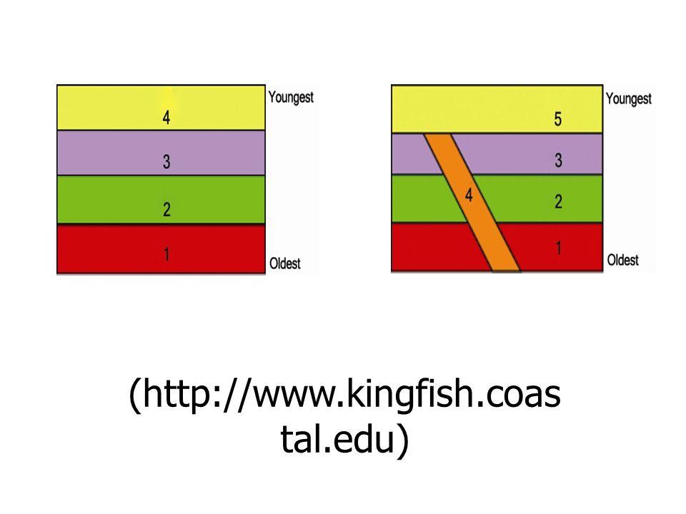 (http://www.kingfish.coas tal.edu)