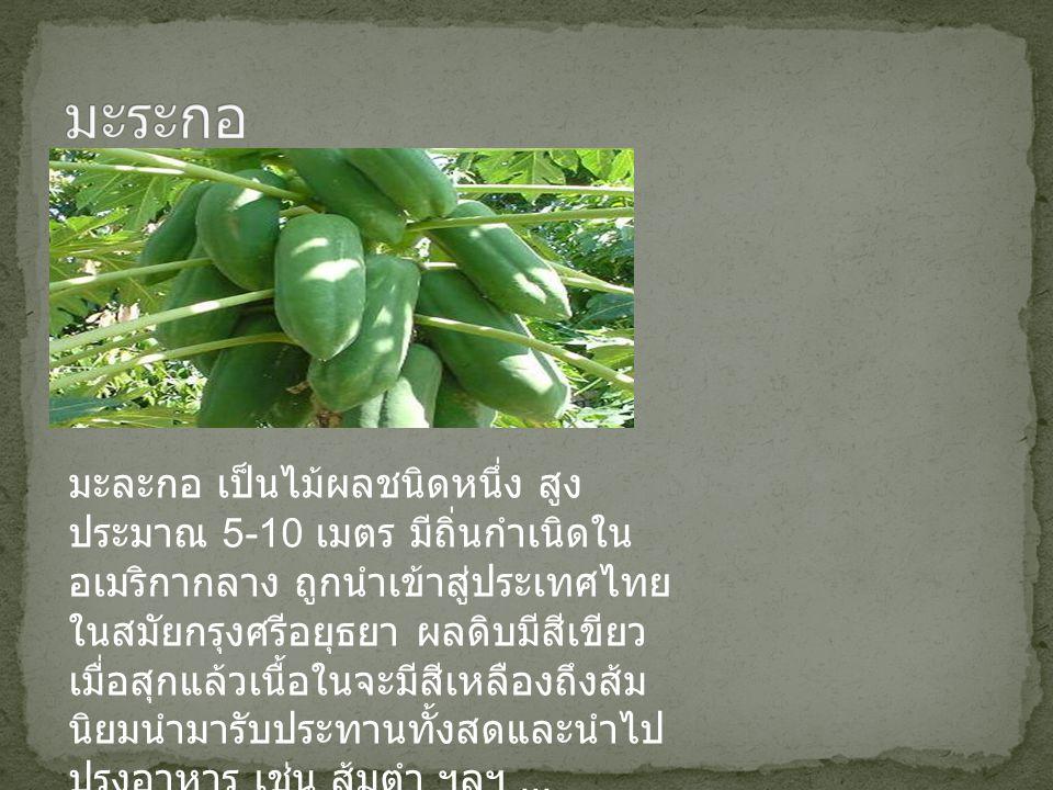 มะละกอ เป็นไม้ผลชนิดหนึ่ง สูง ประมาณ 5-10 เมตร มีถิ่นกำเนิดใน อเมริกากลาง ถูกนำเข้าสู่ประเทศไทย ในสมัยกรุงศรีอยุธยา ผลดิบมีสีเขียว เมื่อสุกแล้วเนื้อใน