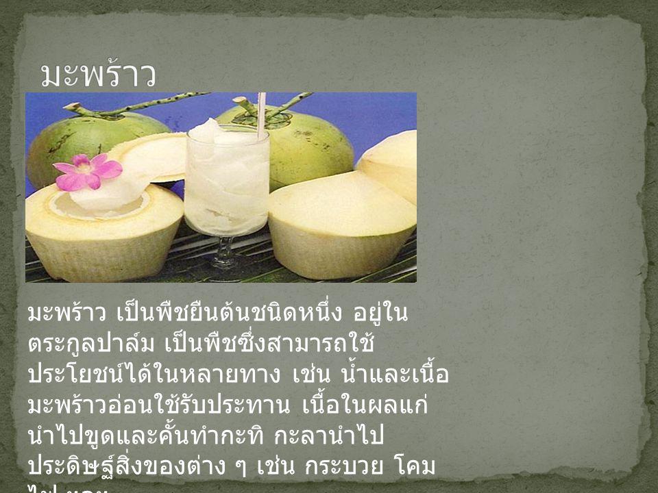 มะพร้าว เป็นพืชยืนต้นชนิดหนึ่ง อยู่ใน ตระกูลปาล์ม เป็นพืชซึ่งสามารถใช้ ประโยชน์ได้ในหลายทาง เช่น น้ำและเนื้อ มะพร้าวอ่อนใช้รับประทาน เนื้อในผลแก่ นำไป